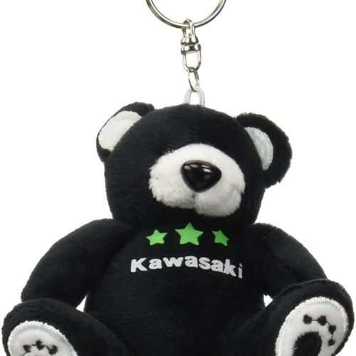 kawasaki-star-bear